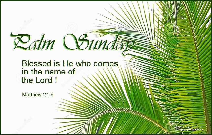 Palm Sunday Reflection-April 5, 2020