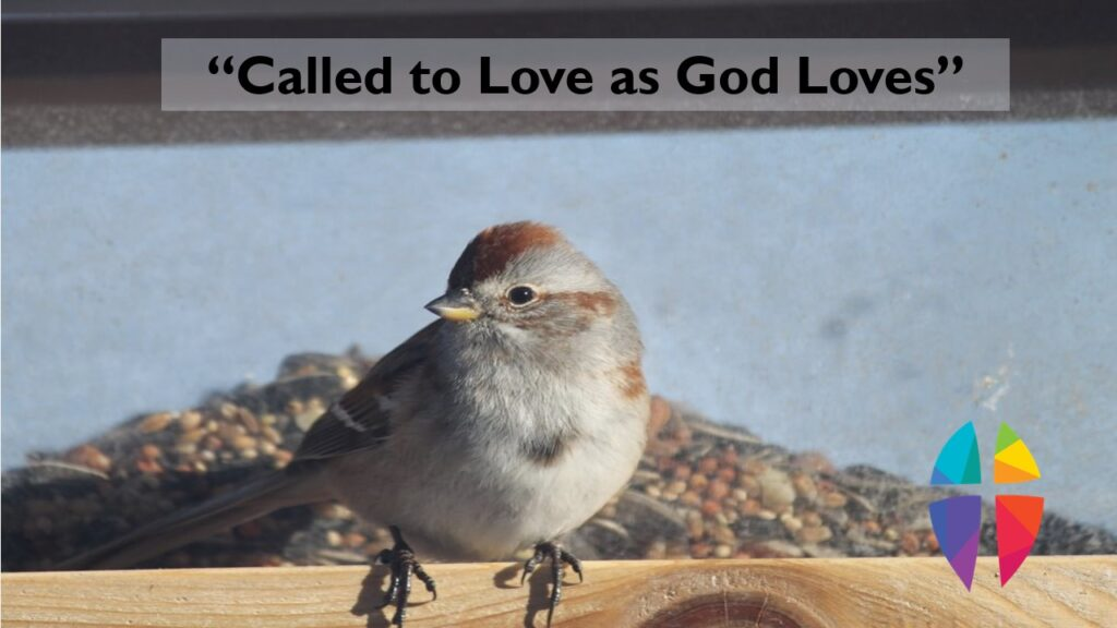 """""""CALLED TO LOVE AS GOD LOVES"""" – SUNDAY, March 14, 2021"""