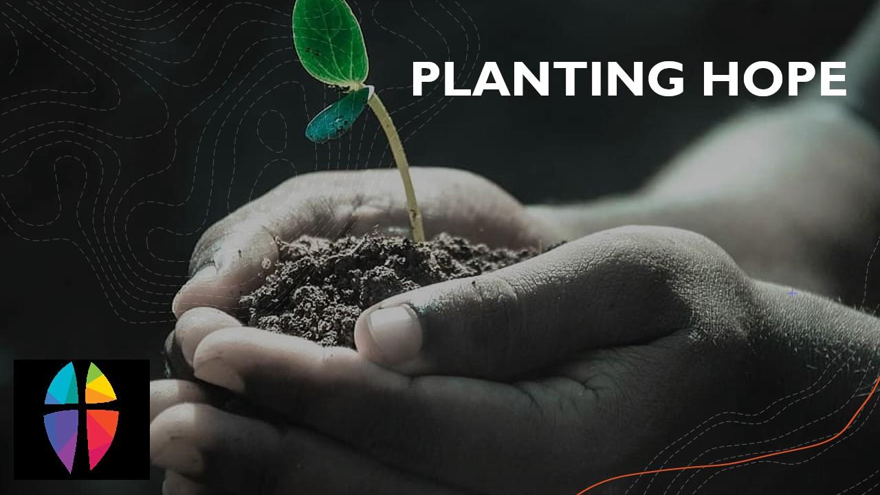 Planting Hope - Lent