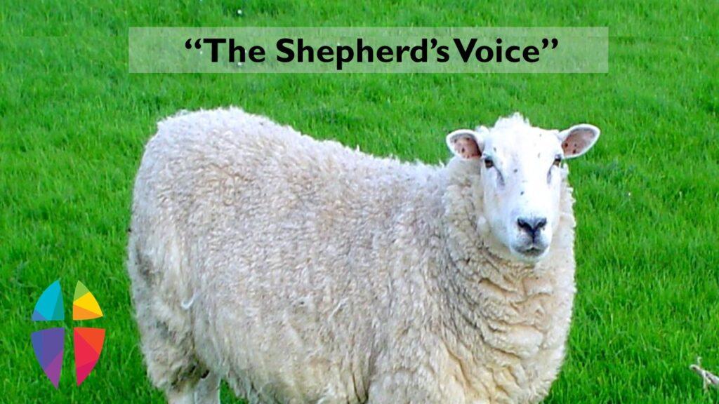 """THE SHEPHERD'S VOICE"" – SUNDAY, April 25, 2021"