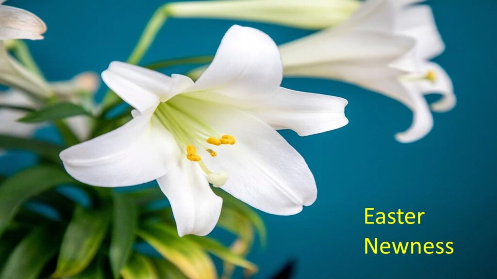 """EASTER NEWNESS"" – SUNDAY, April 4, 2021"
